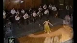 getlinkyoutube.com-Dina دينا egyptian dancer (gold costume)    رقص شرقي  مصري