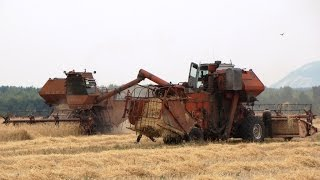 getlinkyoutube.com-Harvester SK-5M1, unloading grain /// Комбайн СК-5М1, выгрузка зерна