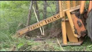 getlinkyoutube.com-Perfect TreeSaw Cutting Hedge