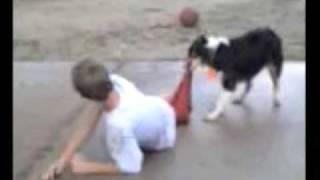 getlinkyoutube.com-dog vs boy in basketball..... pants lose