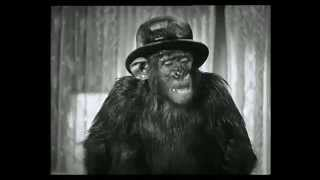 getlinkyoutube.com-Laurel & Hardy. Best Clips 2