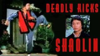 getlinkyoutube.com-Shaolin Deadly Kicks