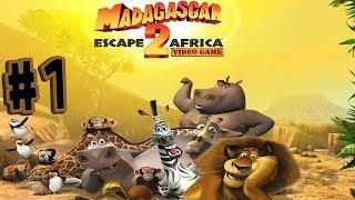 getlinkyoutube.com-Madagascar: Escape 2 Africa - Walkthrough - Part 1 - In Madagascar (PC) [HD]