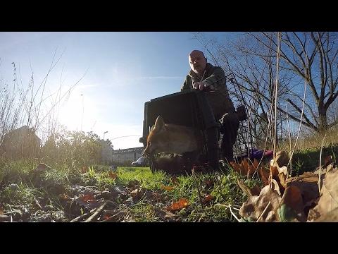 GoPro: Urban Animal Rescuer Stefan Brockling