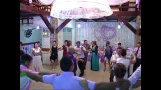 getlinkyoutube.com-Formatia PROFESSIONAL din Pascani - secvente nunta 2014 sarbe moldovenesti LIVE