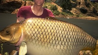 getlinkyoutube.com-Dovetail Games Euro Fishing Big CARP 17/17/19kg