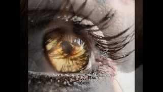 getlinkyoutube.com-Metropolis - The Eyes Of Love (Subtitulado)
