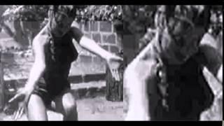 REPTILIAN SHEREE  TIGER DANCE