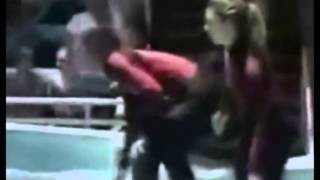 getlinkyoutube.com-ACTUAL FOOTAGE ~ KILLER WHALES mangle 1 trainer & nearly kills another ORCAS ORCA at SeaWorld
