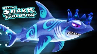 getlinkyoutube.com-Hungry Shark Evolution - New Shark - Zephyr Baby