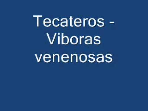 Tecateros - Viboras venenosas