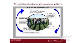Pursuit of Sustainability