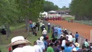 getlinkyoutube.com-EL CONEJO VS EL FREAKING
