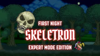 getlinkyoutube.com-Terraria 1.3 - [Expert Mode Speedrun] Skeletron on First Night