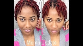 getlinkyoutube.com-1 Month Old Starter Locs | Journey2Zee