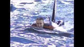 getlinkyoutube.com-Seaworld Killer Whale Trainer: John Hargrove / Bridgette Pirtle (waterwork)