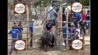 getlinkyoutube.com-Fiesta de Victor Gallo Pinto Santana 2014