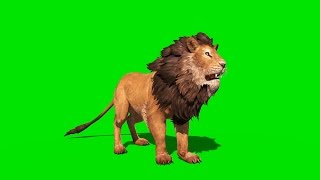 getlinkyoutube.com-Green Screen Ferocious Lion Runs Attacks and Roars - Footage PixelBoom