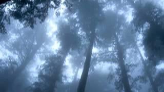 getlinkyoutube.com-Adyashanti - Always be chasing something