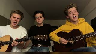 Too Much To Ask   Niall Horan (Cover By New Hope Club)