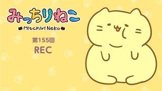 "getlinkyoutube.com-みっちりねこ 4コマ漫画でキャラ紹介「むっちり」No.155 MitchiriNeko - Introduction of characters - ""Mutchiri (fat)"""