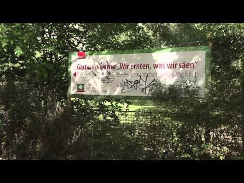 Speaking Gardens - The Berlin urban gardening movement (A documentary film)