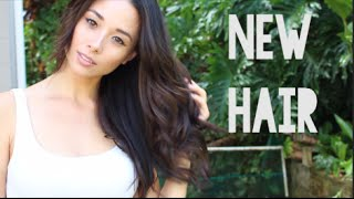 getlinkyoutube.com-New Hair Color - Light to Dark