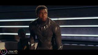 Télécharger Black Panther Film Complet UHD En VF & VO