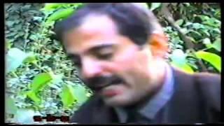Hassan Darzi - Dardi Dl