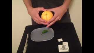 getlinkyoutube.com-Card to Lemon/Orange Trick Revealed