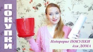 getlinkyoutube.com-НЕДОРОГИЕ ПОКУПКИ ДЛЯ ДОМА