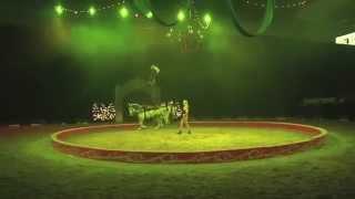 getlinkyoutube.com-Ma'Ceo South Point Casino Las Vegas
