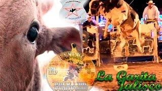 getlinkyoutube.com-NO QUISO MONTAR PORFIS DE JALISCO!!! R. EL GUAMUCHIL DE JUAN GIL PRECIADO EN LA GARITA JALISCO 2016