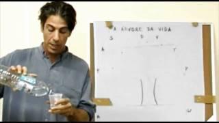 """getlinkyoutube.com-Palestra """"Conversando com Deus"""", com dr. Alberto Gonzalez - 29/04/2007"""