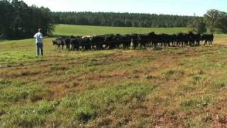 Farm Layout for Prescribed Grazing