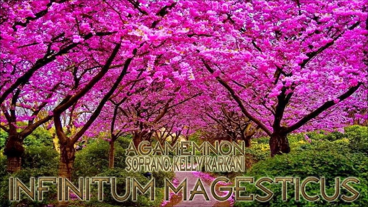 Infinitum Magesticus
