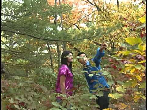 Afghan New Song 2011 november HD