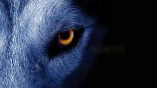 getlinkyoutube.com-David Guetta ft. Sia - She Wolf Instrumental *