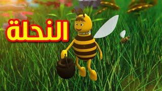 getlinkyoutube.com-النحلة - قناة بيبي الفضائية