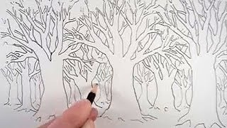 getlinkyoutube.com-How to Draw a Tree and a Forest