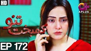 Kambakht Tanno - Episode 172 | A Plus ᴴᴰ Drama | Shabbir Jaan, Tanvir Jamal, Sadaf Ashaan