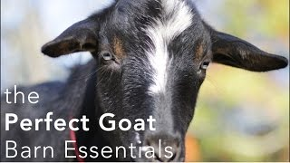 getlinkyoutube.com-The Perfect Goat Barn Setup - what you need to make keeping goats easier!