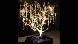 Natural Decor Design's Manzanita Branches