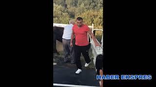 Kurban Bayramı'nda kaçan dana İzmir'e getirildi
