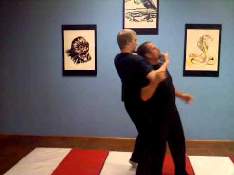 Chindo Self Defense - Redirection Technique with neck break