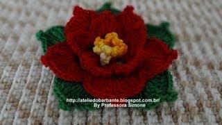 getlinkyoutube.com-Flor de Natal parte-1