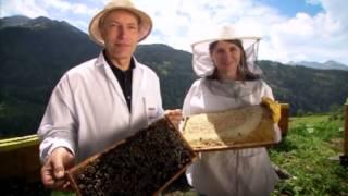 """getlinkyoutube.com-Die Imkerei Gritsch in der Dokumentation """"Die Alpen von oben"""" (© VIDICOM Filmarchiv)"""