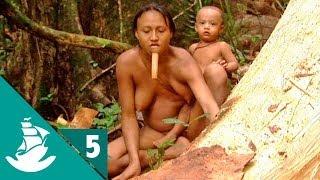 getlinkyoutube.com-Amazonia: La Selva y el Asfalto (parte 5/5)