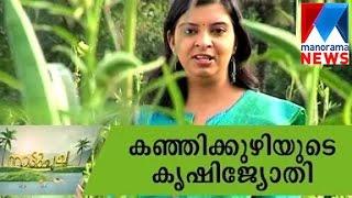 getlinkyoutube.com-Kanjikkuzhi's Jyothish model | Manorama News | Nattupacha