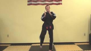 8 Karate Kicks